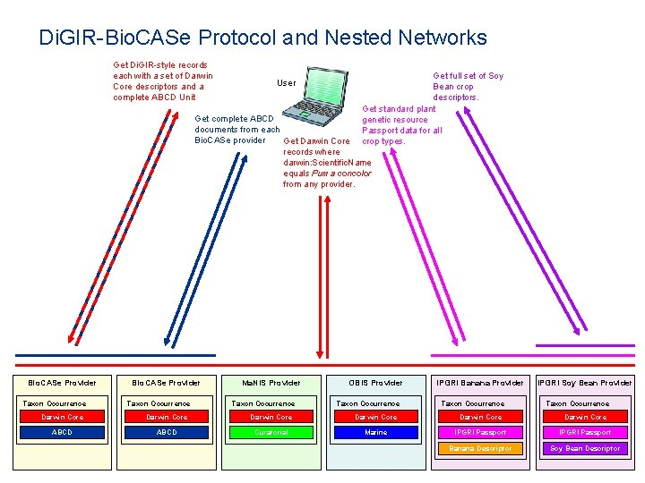 Di. GIR-Bio. CASe Protocol and Nested Networks Get Di. GIR-style records each with a