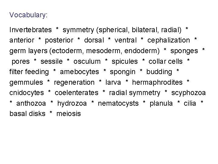 Vocabulary: Invertebrates * symmetry (spherical, bilateral, radial) * anterior * posterior * dorsal *
