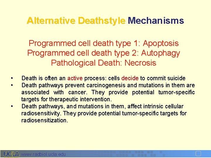 Alternative Deathstyle Mechanisms Programmed cell death type 1: Apoptosis Programmed cell death type 2:
