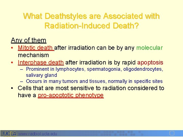 What Deathstyles are Associated with Radiation-Induced Death? Any of them • Mitotic death after