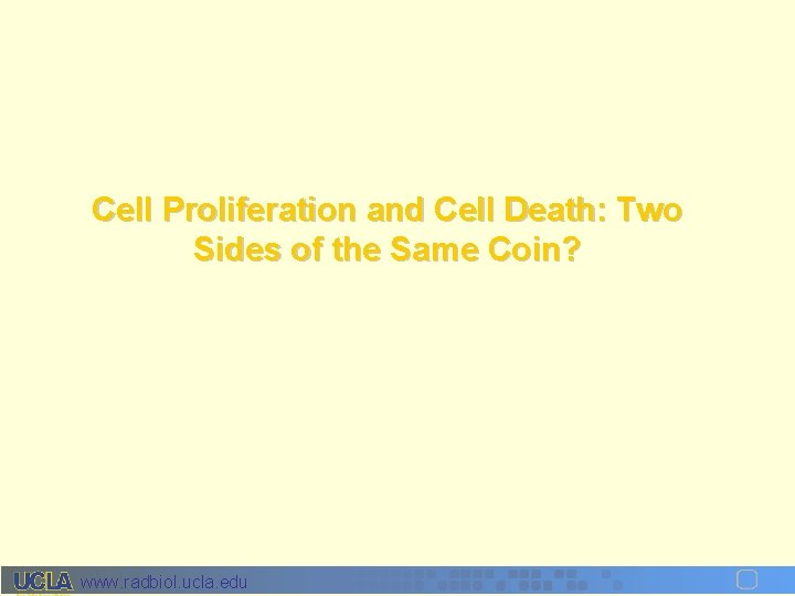 Cell Proliferation and Cell Death: Two Sides of the Same Coin? www. radbiol. ucla.