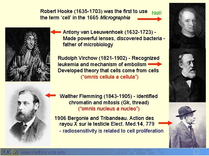 Robert Hooke (1635 -1703) was the first to use Not! the term 'cell' in