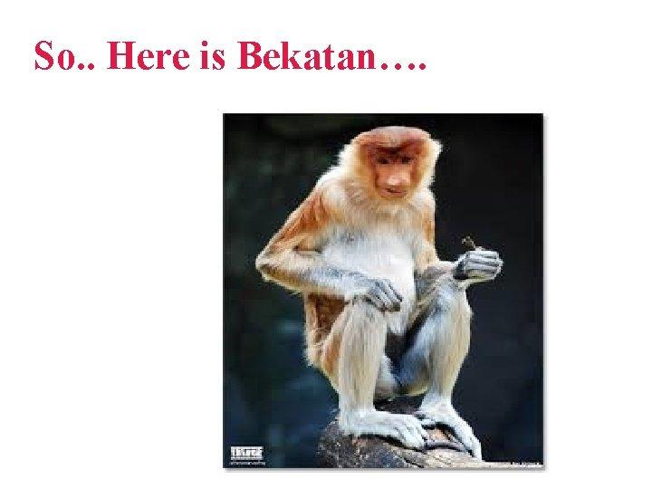 So. . Here is Bekatan….