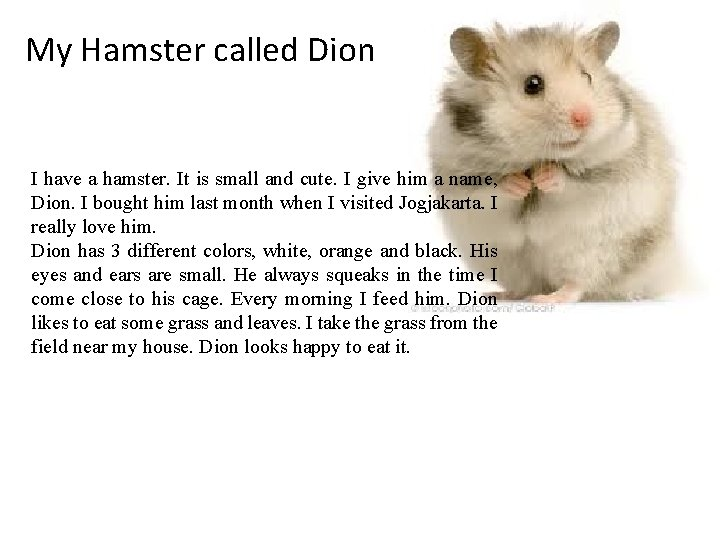 My Hamster called Dion I have a hamster. It is small and cute. I