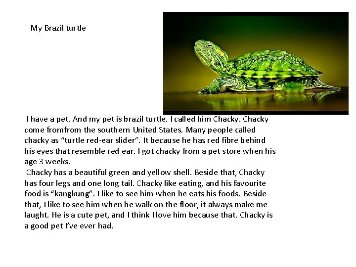 My Brazil turtle I have a pet. And my pet is brazil turtle. I