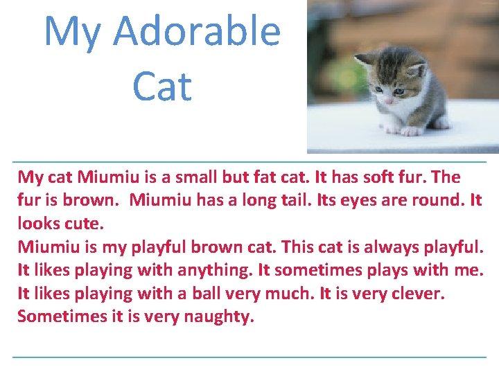 My Adorable Cat My cat Miumiu is a small but fat cat. It has