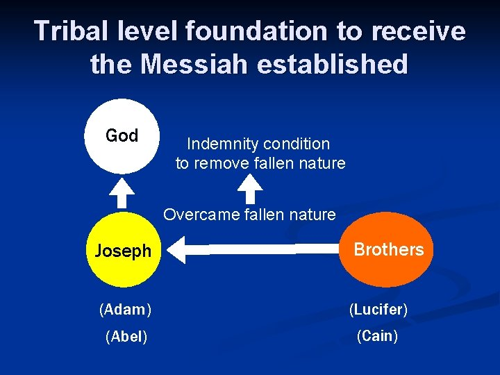 Tribal level foundation to receive the Messiah established God Indemnity condition to remove fallen