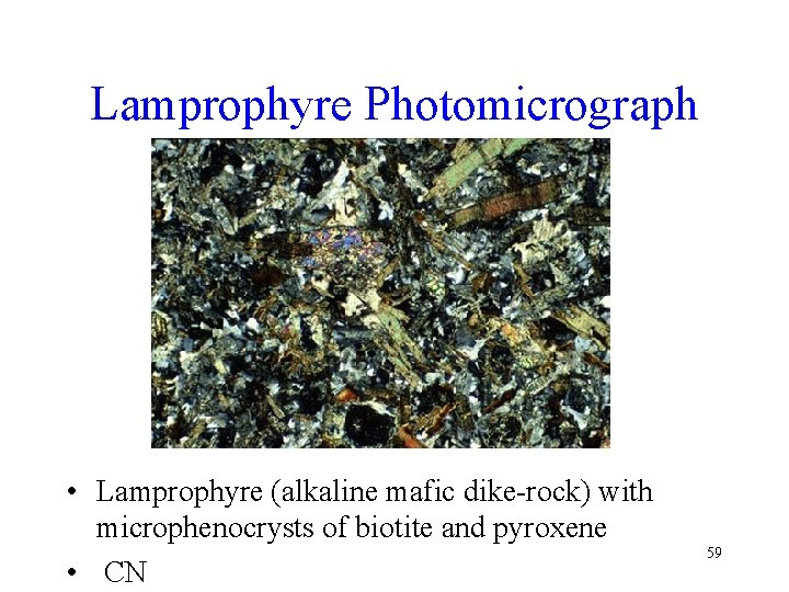 Lamprophyre Photomicrograph • Lamprophyre (alkaline mafic dike-rock) with microphenocrysts of biotite and pyroxene •