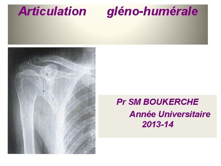 Articulation gléno-humérale Pr SM BOUKERCHE Année Universitaire 2013 -14