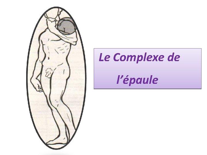 Le Complexe de l'épaule