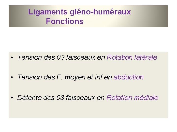 Ligaments gléno-huméraux Fonctions • Tension des 03 faisceaux en Rotation latérale • Tension des