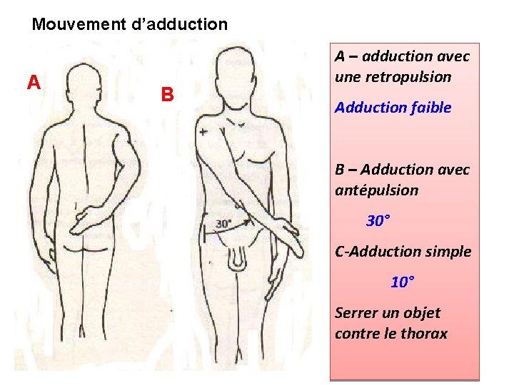 Mouvement d'adduction A B A – adduction avec une retropulsion Adduction faible B –