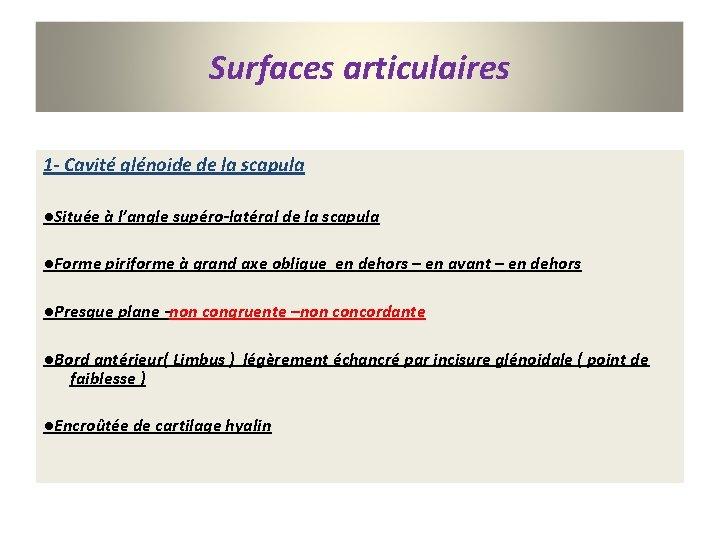 Surfaces articulaires 1 - Cavité glénoide de la scapula ●Située à l'angle supéro-latéral de
