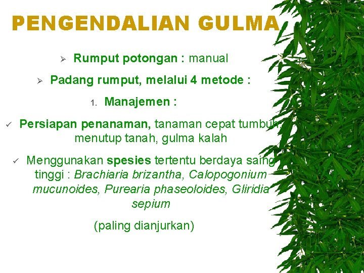 PENGENDALIAN GULMA Ø Ø Rumput potongan : manual Padang rumput, melalui 4 metode :