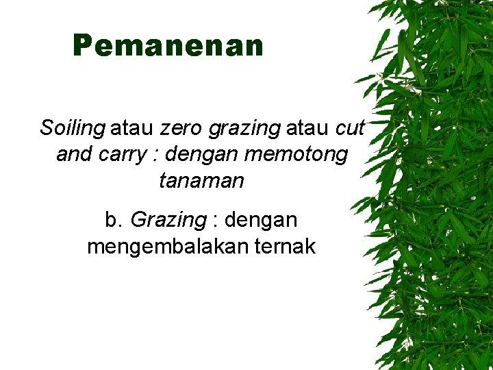 Pemanenan Soiling atau zero grazing atau cut and carry : dengan memotong tanaman b.