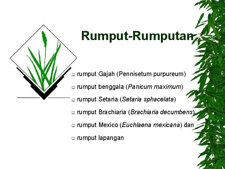 Rumput-Rumputan q rumput Gajah (Pennisetum purpureum) q rumput benggala (Panicum maximum) q rumput Setaria