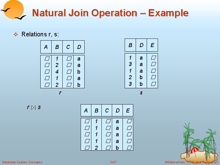 Natural Join Operation – Example v Relations r, s: A B C D B