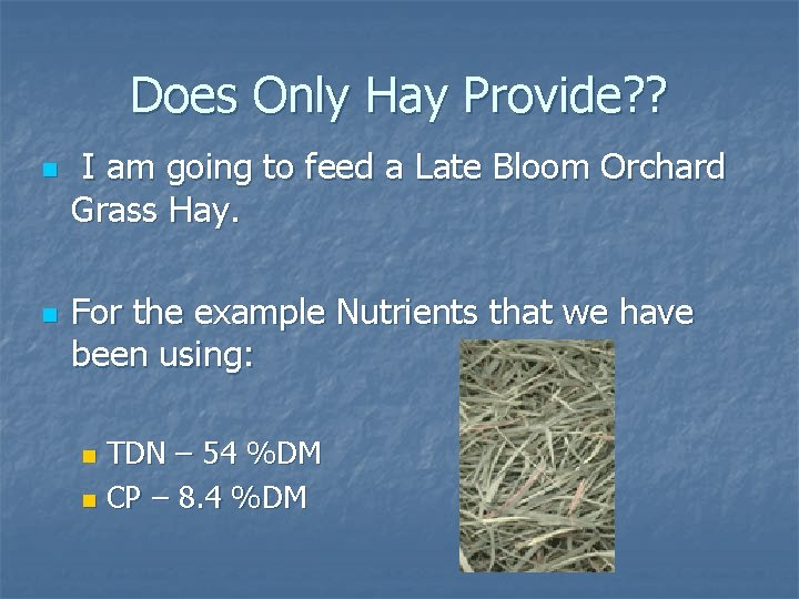 Does Only Hay Provide? ? n n I am going to feed a Late
