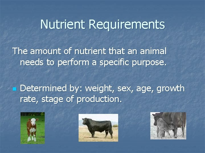 Nutrient Requirements The amount of nutrient that an animal needs to perform a specific