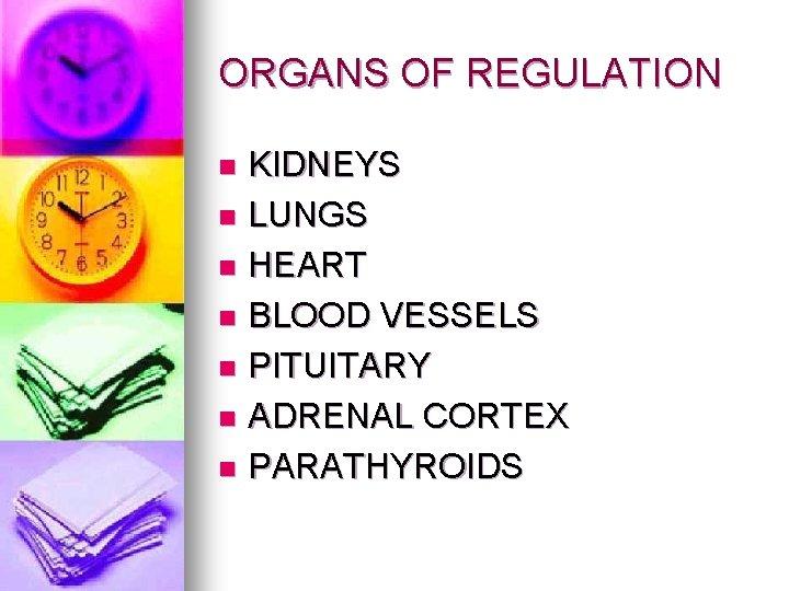 ORGANS OF REGULATION KIDNEYS n LUNGS n HEART n BLOOD VESSELS n PITUITARY n