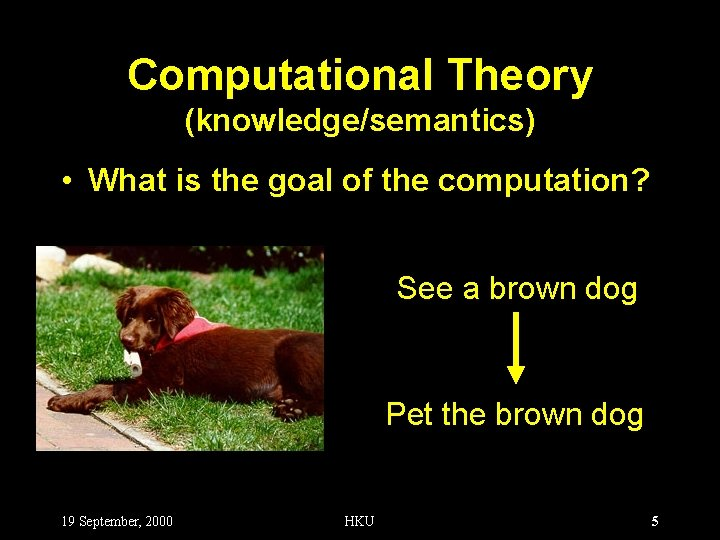 Computational Theory (knowledge/semantics) • What is the goal of the computation? See a brown