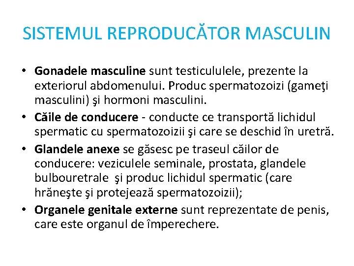 SISTEMUL REPRODUCĂTOR MASCULIN • Gonadele masculine sunt testicululele, prezente la exteriorul abdomenului. Produc spermatozoizi