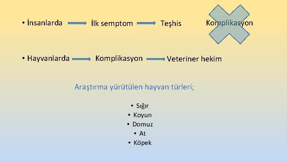 • İnsanlarda • Hayvanlarda İlk semptom Komplikasyon Teşhis Veteriner hekim Araştırma yürütülen hayvan