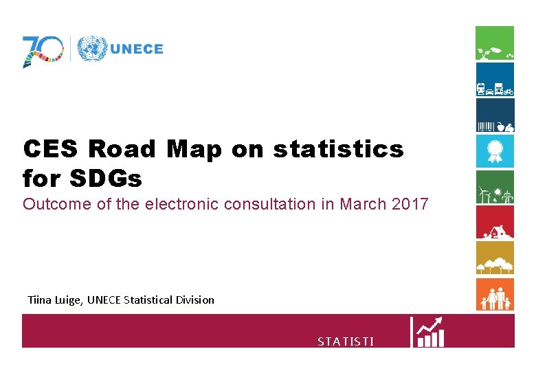 CES Road Map on statistics for SDGs Outcome of the electronic consultation in March