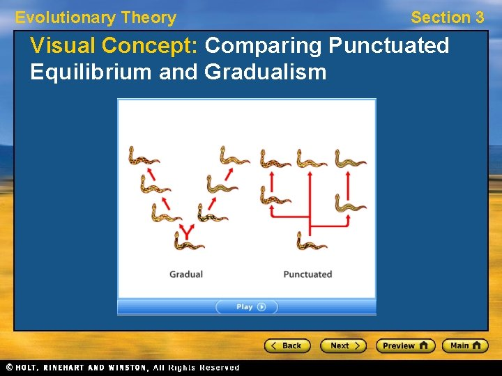 Evolutionary Theory Section 3 Visual Concept: Comparing Punctuated Equilibrium and Gradualism