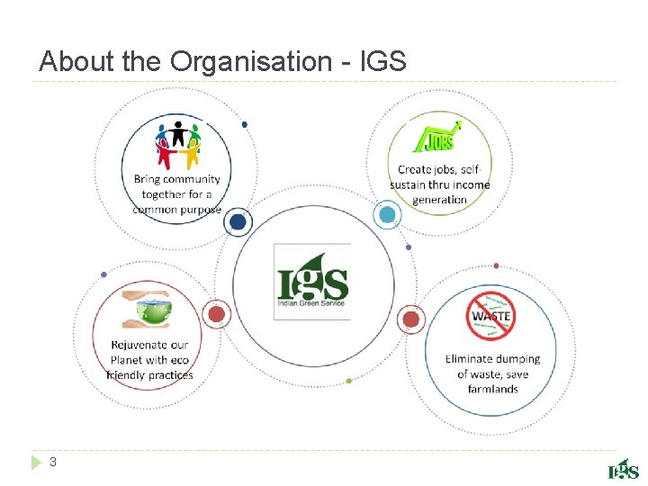 About the Organisation - IGS 3