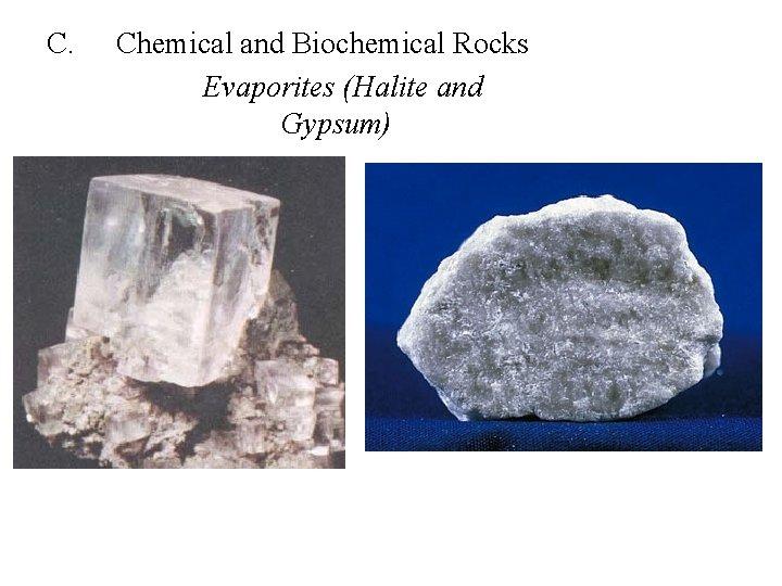 C. Chemical and Biochemical Rocks Evaporites (Halite and Gypsum)