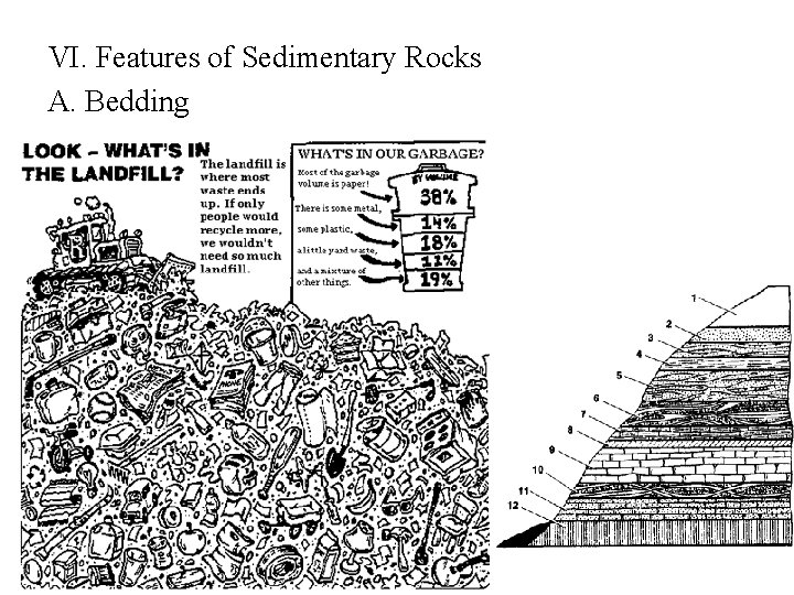 VI. Features of Sedimentary Rocks A. Bedding