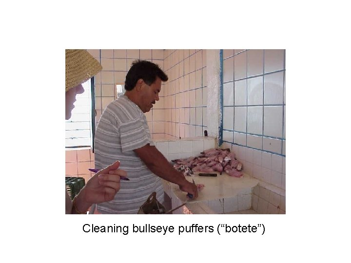 "Cleaning bullseye puffers (""botete"")"