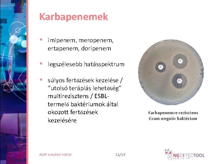rezisztens baktériumok kezelése