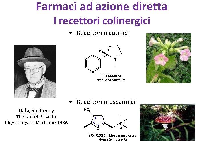Farmaci ad azione diretta I recettori colinergici • Recettori nicotinici • Recettori muscarinici Dale,