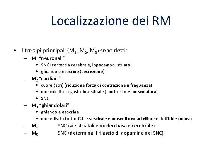 Localizzazione dei RM • I tre tipi principali (M 1, M 2, M 3)