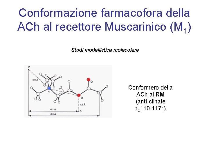 Conformazione farmacofora della ACh al recettore Muscarinico (M 1) Studi modellistica molecolare Conformero della