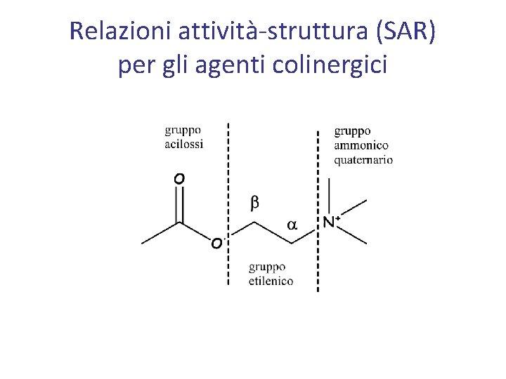 Relazioni attività-struttura (SAR) per gli agenti colinergici