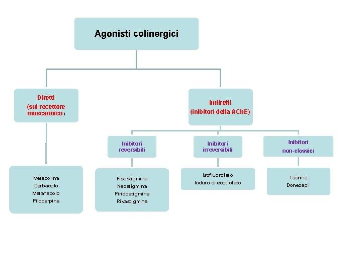 Agonisti colinergici Diretti Indiretti (inibitori della ACh. E) (sul recettore muscarinico) Inibitori reversibili Metacolina