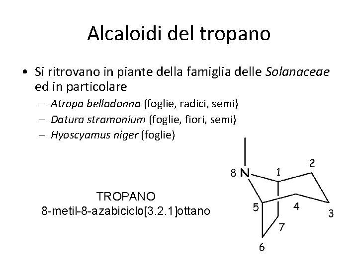 Alcaloidi del tropano • Si ritrovano in piante della famiglia delle Solanaceae ed in