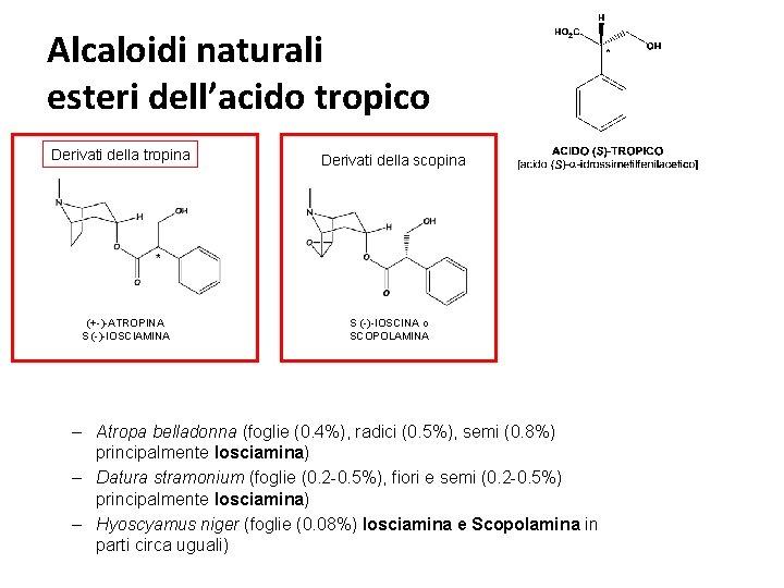 Alcaloidi naturali esteri dell'acido tropico Derivati della tropina (+-)-ATROPINA S (-)-IOSCIAMINA Derivati della scopina
