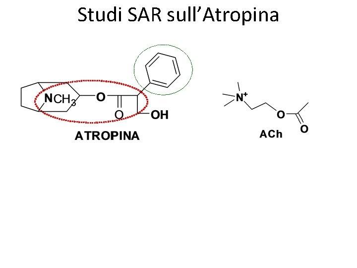 Studi SAR sull'Atropina