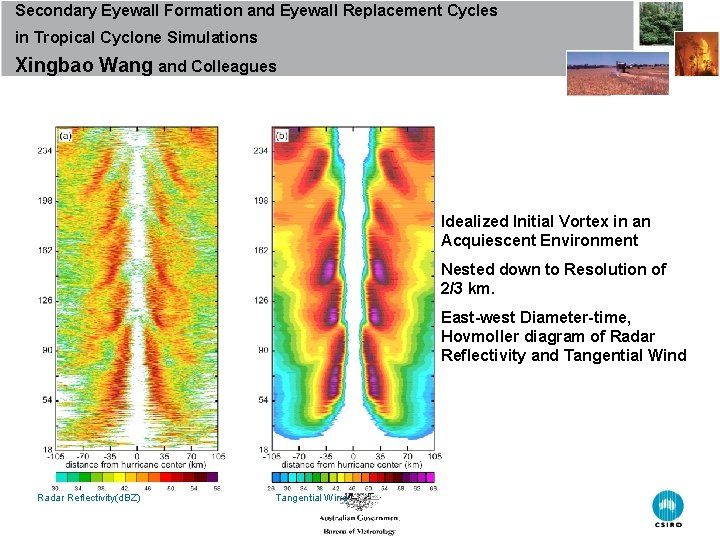 Secondary Eyewall Formation and Eyewall Replacement Cycles in Tropical Cyclone Simulations Xingbao Wang and