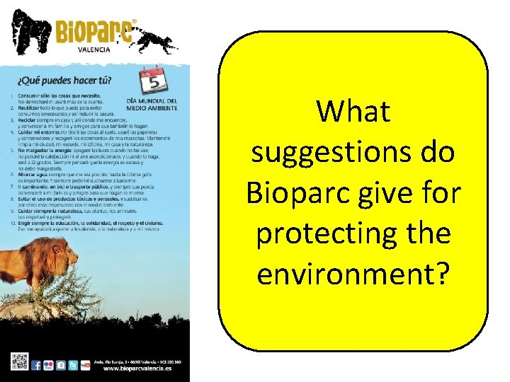 What suggestions do Bioparc give for protecting the environment?