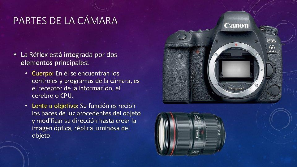 PARTES DE LA CÁMARA • La Réflex está integrada por dos elementos principales: •