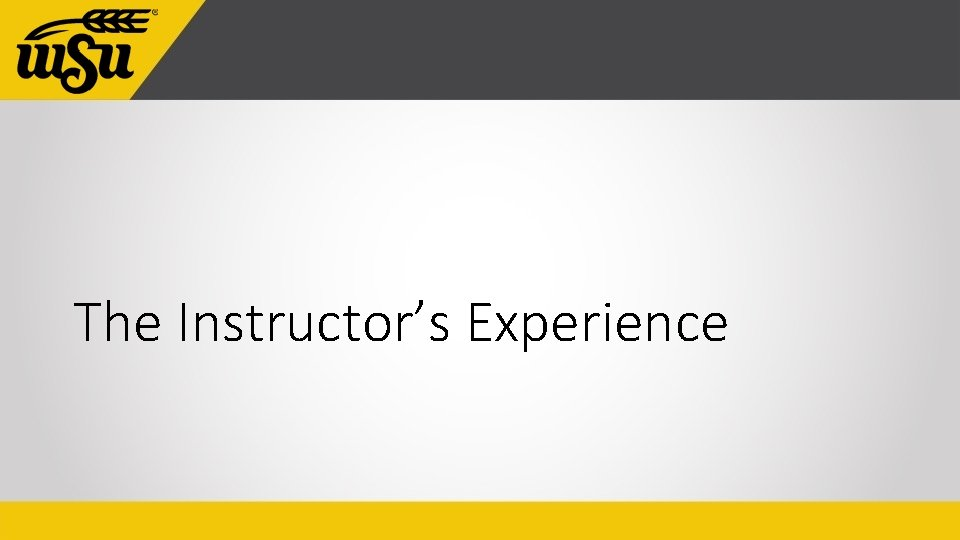 The Instructor's Experience