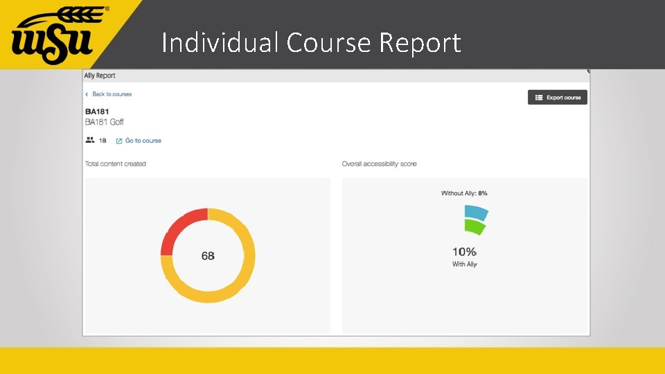Individual Course Report