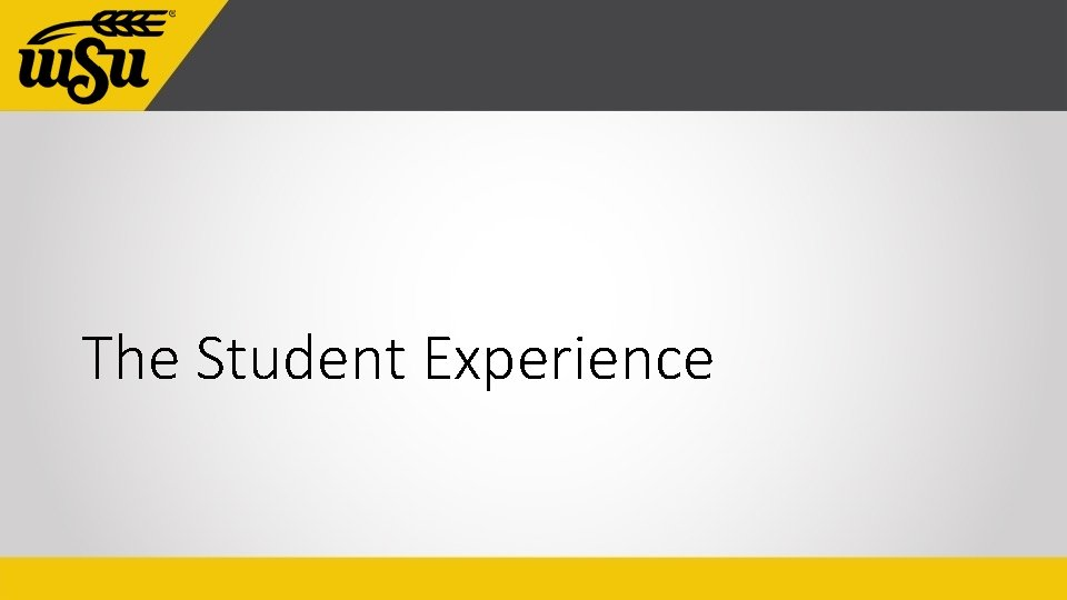 The Student Experience