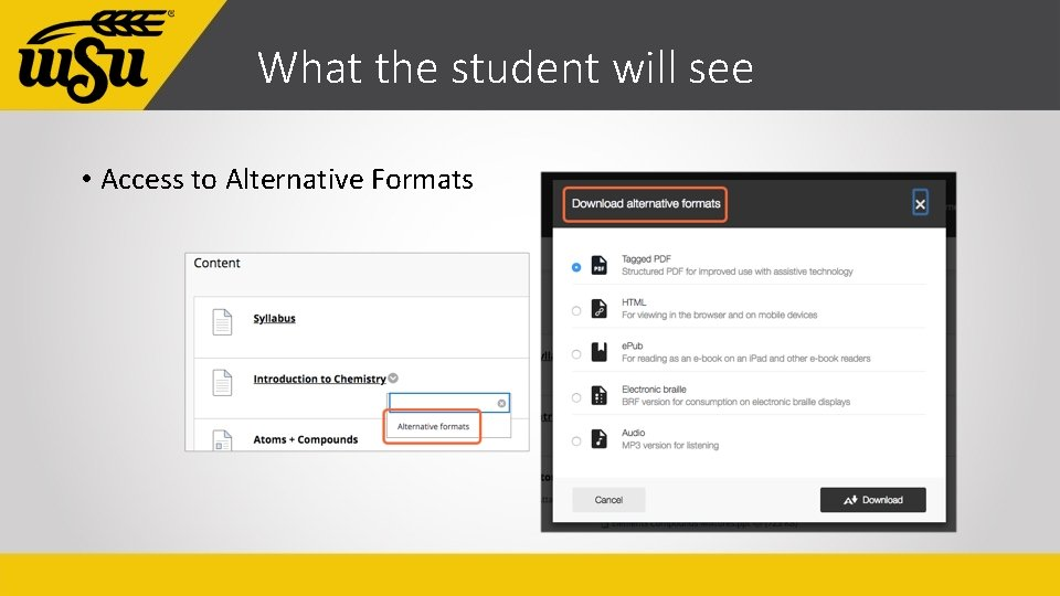 What the student will see • Access to Alternative Formats
