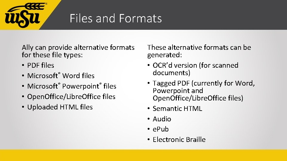 Files and Formats Ally can provide alternative formats for these file types: • PDF